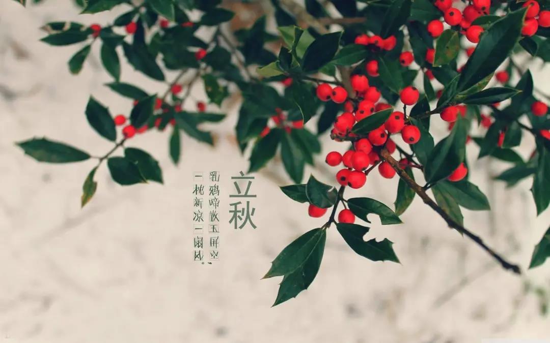 立秋节气朋友圈文案,立秋节气说说祝福语和立秋图片素材